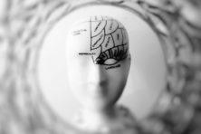 Het geheim van het 'mijmernetwerk' in het brein
