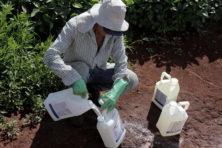 Helaas hadden die Ierse boeren geen pesticiden