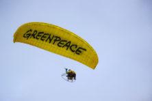 Zin in pluche? Ga werken bij Greenpeace!