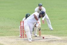 Cricket ingewikkeld? 'Na een halfuurtje begrijp je het'