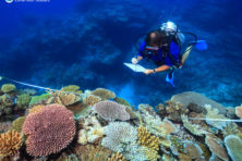 Zelfs koraalrif wordt inzet van ruzie tussen China en Australië