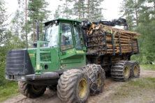 Oververhitte houtmarkt is een risico op zich