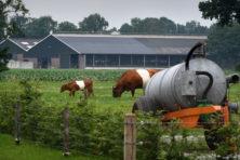 Kan Nederland nog ontsnappen uit de stikstoftrechter?