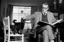 100 jaar W.F. Hermans: toen schrijvers nog geen watjes waren